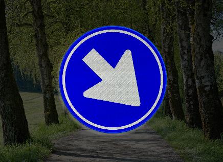 Moeten bestuurders dit bord links voorbij gaan